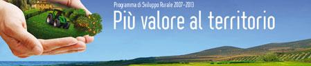 banner-PSR-Calabria