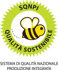sqnpi_logo