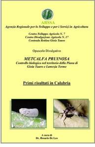 METCALFA (Farfallina Bianca)