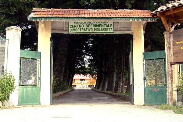 centro sperimentale arsac molarotta