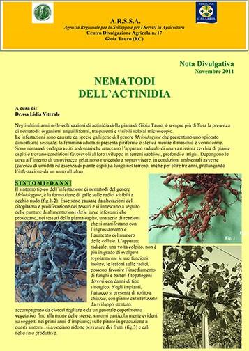 nematodi actinidia