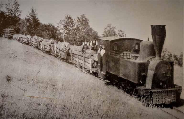legname su carrelli ferroviari nelle montagne di Petilia Policastro