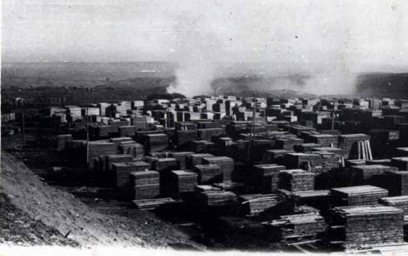 """Deposito di legname della segheria in località """"Foresta"""""""