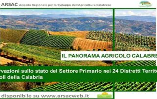 panorama agricolo calabrese