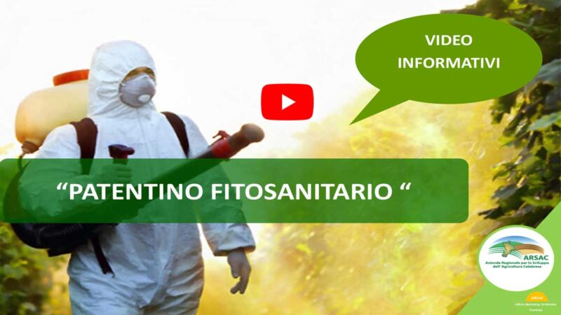 patentino-video-web