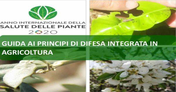 banner-guida-fitosanitaria-web