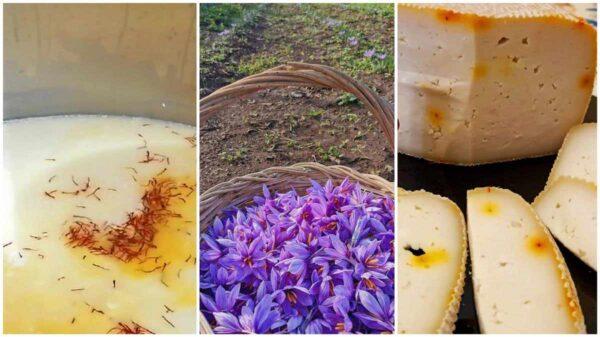 formaggio-zafferano-web